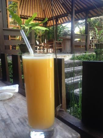Ubud Sari Health Resort: Daily breakfast/lunch and dinner - any juice of your choice from the menu