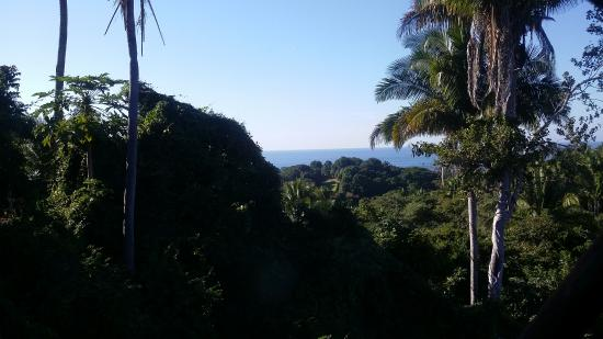 Surf House San Pancho: View from the guest room.