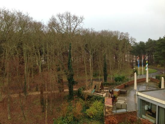 WestCord ApartHotel Boschrijck: View from room balcony in December