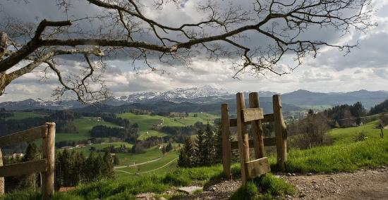 Teufen, Switzerland: getlstd_property_photo