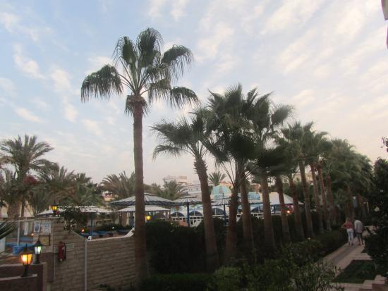 Triton Empire Beach Resort: Fim de dia. Depois da praia ou da piscina pode dar um passeio nos bem cuidados jardins
