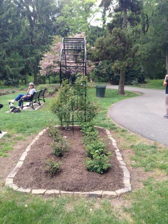 Rose Garden Picture Of Brookdale Park Bloomfield Tripadvisor