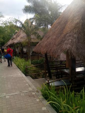 Damires Hills Tierra Verde: thatch-roofed cottages
