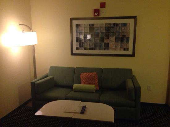 SpringHill Suites Baton Rouge North/Airport : photo1.jpg