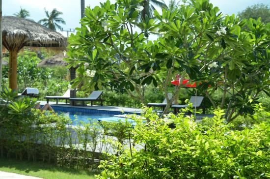 The Nidhra Boutique Resort : view from terrace