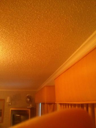Castle Inn: The 1970's cottage cheese ceiling!