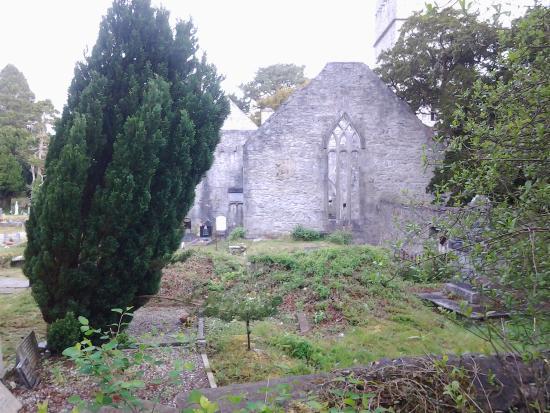 Muckross Abbey : Beautiful exterior