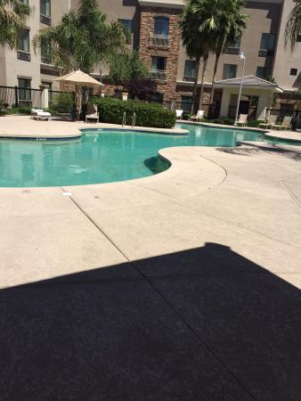 Staybridge Suites Phoenix/Glendale: photo3.jpg
