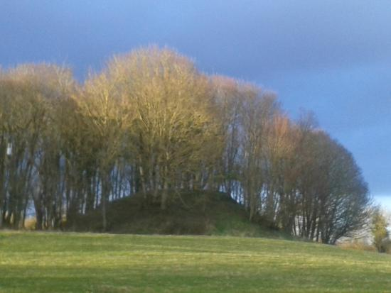 Ancient East Boyne Tours: Raith Airthur, the Eastern Fort, possibly burial place of Queen Tailtiu