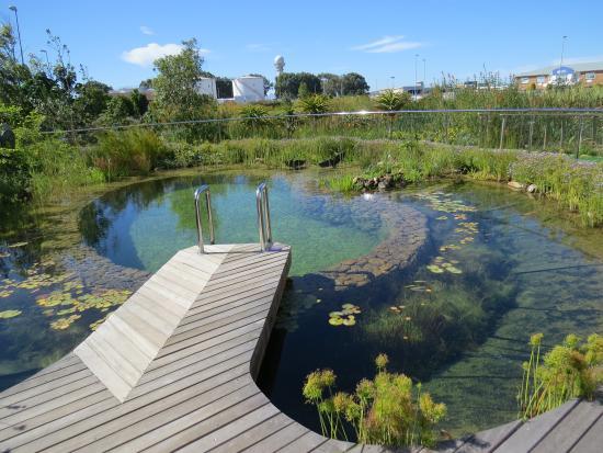 Eco pool foto de hotel verde matroosfontein tripadvisor for Environmentally sustainable swimming pools