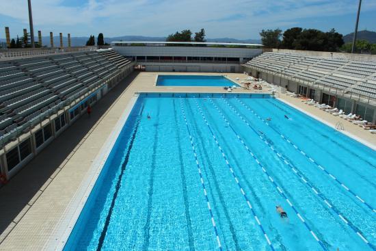 barcelona olympic pool piscines bernat picornell