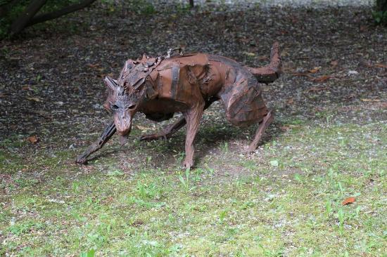La Segaliere : Le loup (parc)