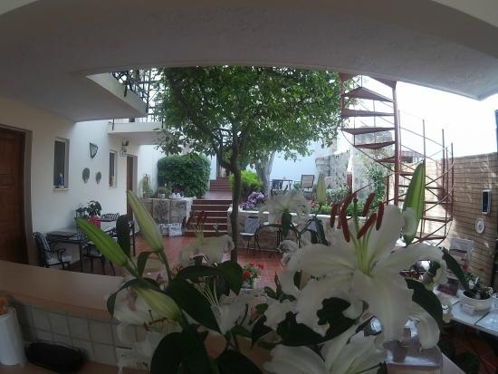 Calergi Residence: reception area