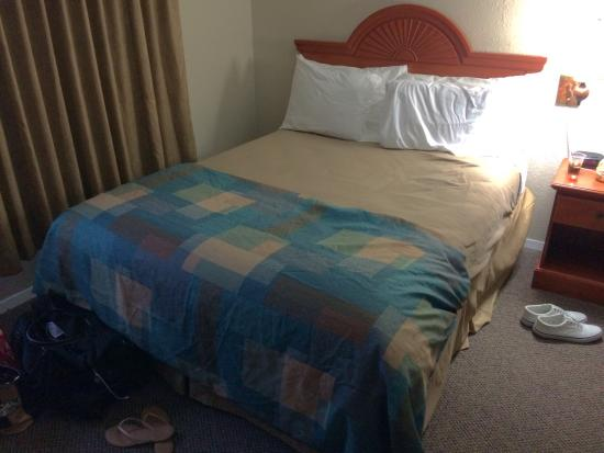 Seashore Inn on the Beach: Queen Bed