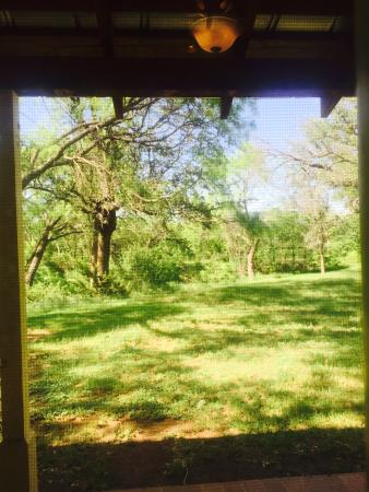Buffalo Gap Bed and Breakfast: View from the bedroom and back porch is so perfect!  If you want to get away you feel separate f