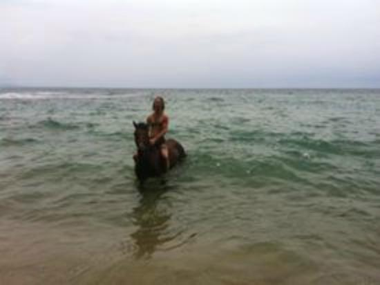 Caribe Horse Riding Club: Jon swimming with the horse!