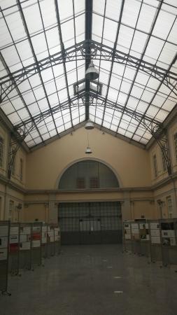 Palazzo Toppo Wassermann