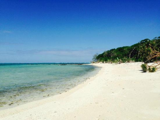Lady Musgrave Island Weather
