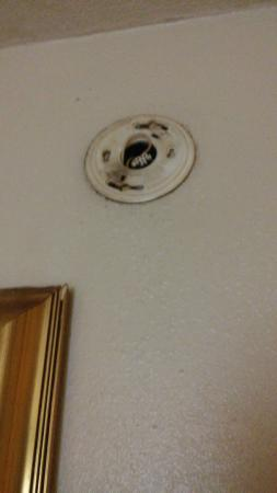 Midtown Inn and Suites: no smoke/fire detector