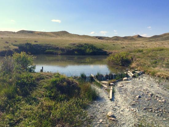 Sacagawea Springs