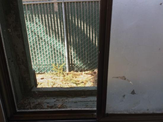 Fha Windows And Doors Evergreen Door Window Reviews