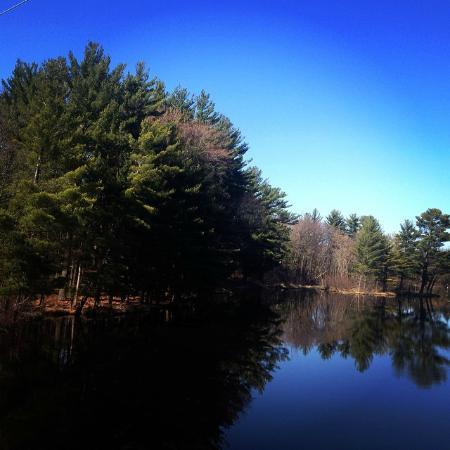 Green Circle Trail: River Pines Trail Segment, Wisconsin River