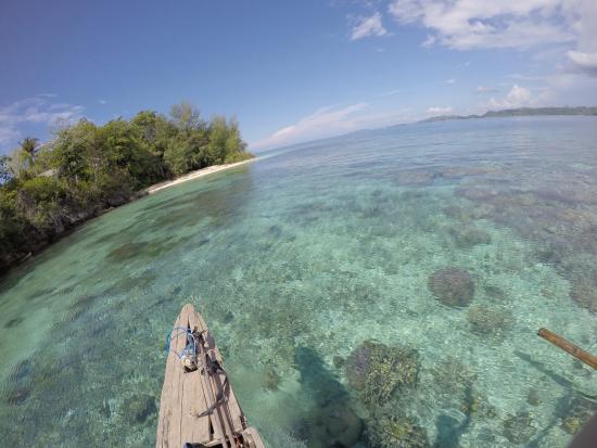 Togian Islands, Indonesien: pulau Taupi