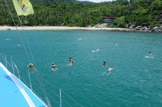 Kia Ora: Swimming in Koh Phangan