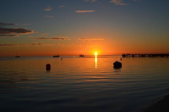 Aussie Wanderer Tours & Safaris - Day Tour: Sunrise
