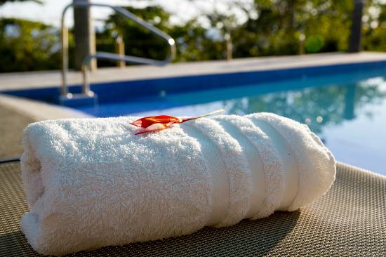 Nicoya, Κόστα Ρίκα: A towel hanging out at the pool