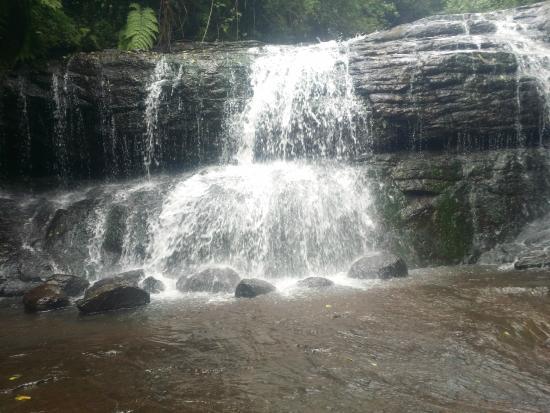 Image result for vattakanal falls kodaikanal