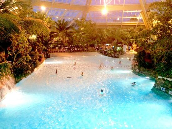 Swimming paradise picture of center parcs elveden forest - Elveden forest centre parcs swimming pool ...