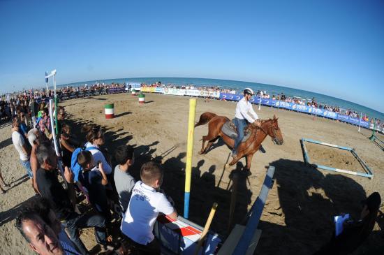 gli eventi della spiaggia Fantini club - Foto di Fantini Club ...