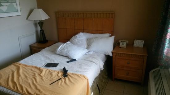 Bedtime Inn: bed