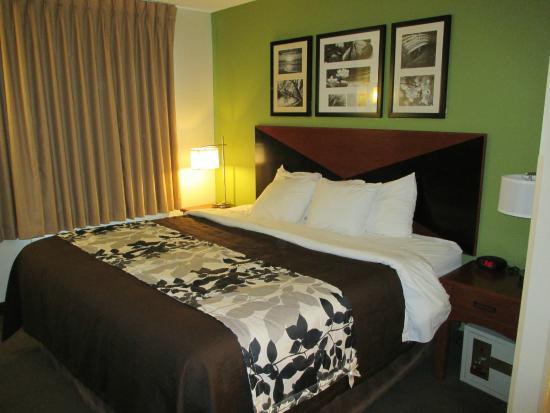 Sleep Inn I 95 North Savannah : Room