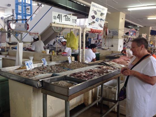 Fish market panama city panama fotograf a de chagres for Fish market panama city beach