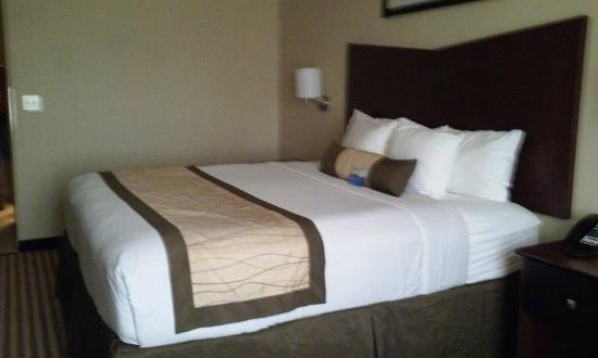 Baymont Inn & Suites Victoria : King Size Bed