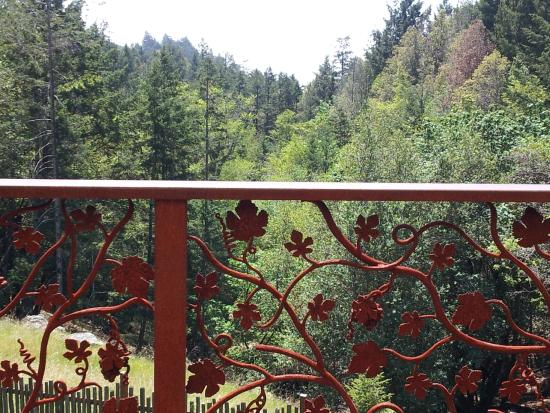 Fort Ross Vineyard Tasting Room: View from the deck of the redwood and the PO