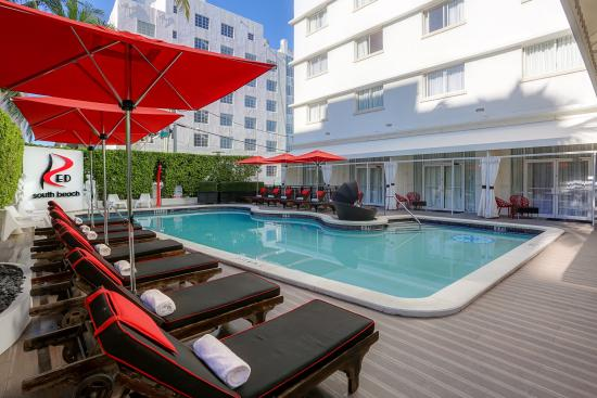 Red South Beach Hotel: Pool lounge area