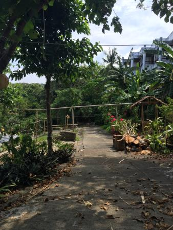 Pearl of the Pacific Boracay Resort & Spa: Poorly maintained gardens