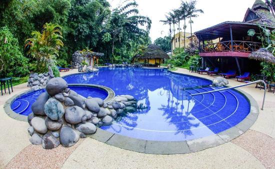 Arasha Tropical Rainforest Resort & Spa: Piscina