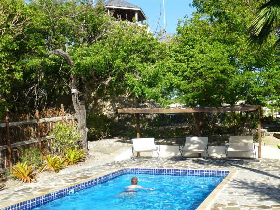 Harmony Hall Antigua : Pool