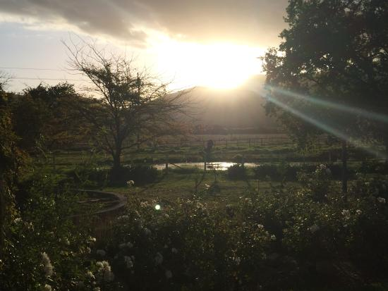 Montpellier De Tulbagh: View from our bedroom in the Manor House