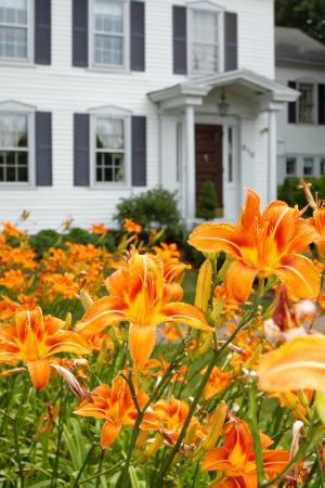 The lilies at the Scranton Seahorse Inn in Spring