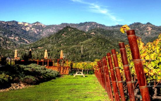 Calistoga Wine Tours