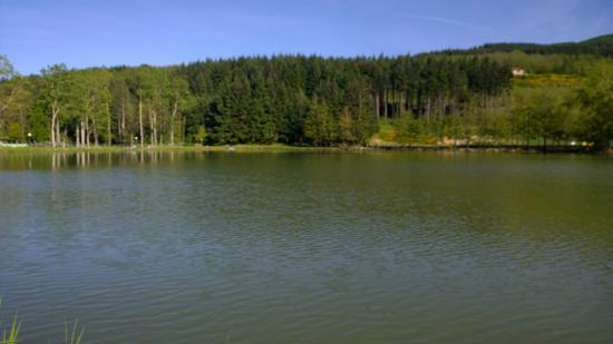 3 - Foto di Lago di Acquapartita, Bagno di Romagna - TripAdvisor