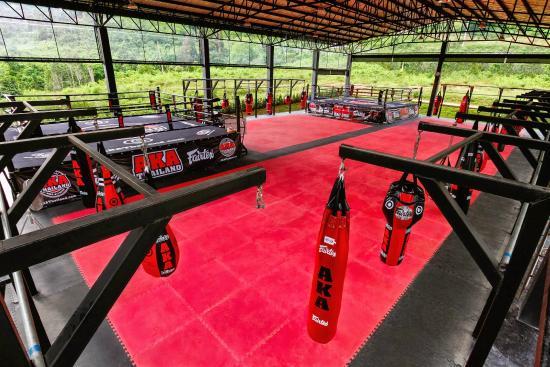 泰国AKA综合格斗健身馆