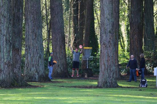 Stayton, OR: Disc Golf Course in Pioneer Park