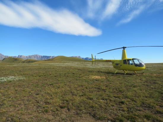 Westline Aviation : Landaway