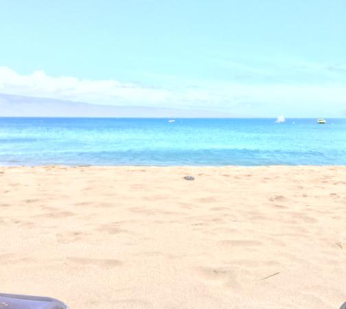 Kaanapali Beach In Front Of The Westin Maui Picture Of The